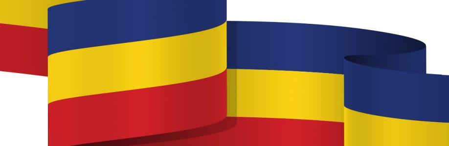 DEMNITATE  NATIONALĂ Cover Image