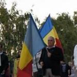 Mitica Stanoiu Profile Picture