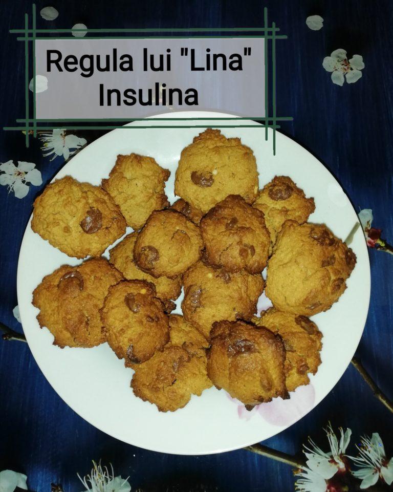 """Regula lui """"Lina"""" – Insulina – Lucruri de folos pentru viață și acasă"""